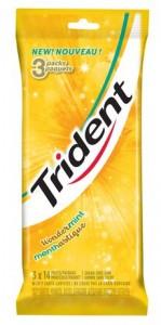 TRIDENT WONDERMINT木糖醇口香糖3*14 pieces