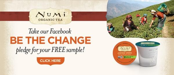 免费3盒有机茶Numi Organic Tea K-Cups