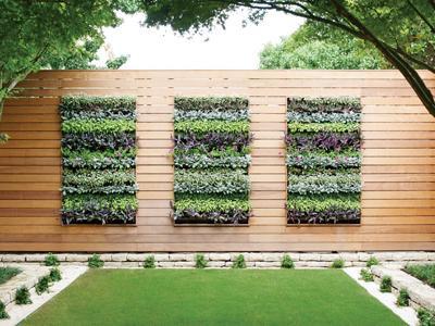Home Depot 5月20日免费课程:打造垂直花园