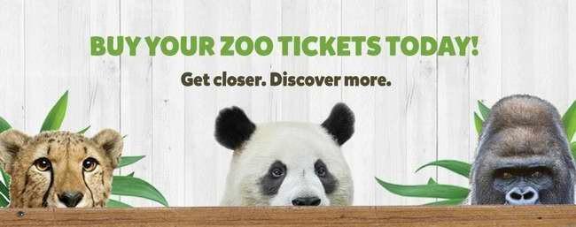 网购多伦多动物园Toronto Zoo门票8.5折,8月31日前有效