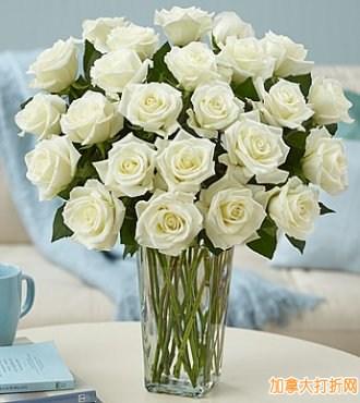 1-800-Flowers 网购星期一!全场7.5折优惠!