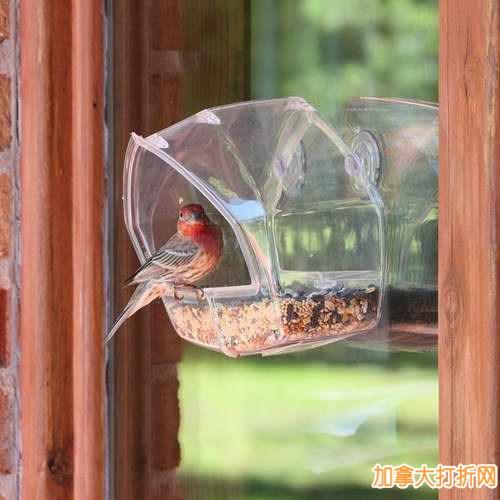 历史新低!Perky-Pet 348 贴窗鸟类喂食器 7.79加元限时特卖!
