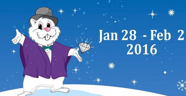 1月28日至2月2日免费参观2016年第60届威利土拨鼠节