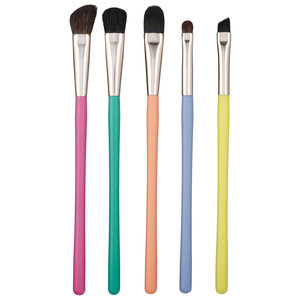 Colorful 5 Brush Set and Case 七彩化妆刷5件套特卖15元,原价25.5元(价值82元)