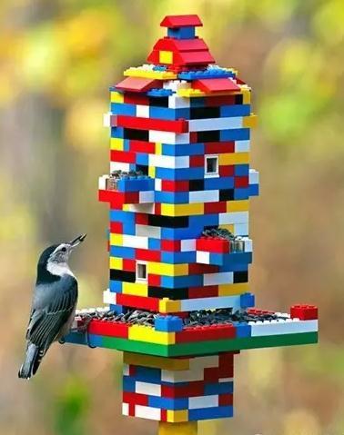 热爱生活,热爱大自然!变废为宝,教您如何打造十款户外喂鸟器!