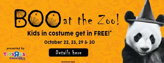 明天起!Toronto Zoo 多伦多动物园万圣节活动,12岁以下儿童可免费入园!