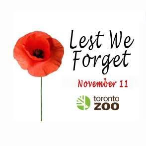 就在明天!多伦多动物园11月11日(星期五)国殇日 9:30-11:00免费入园!