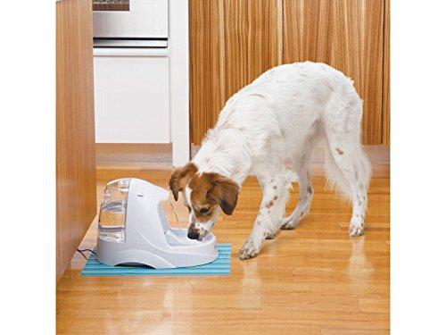金盒头条:精选12款 Petsafe 宠物门、饮水器等4.6折起限时特卖!