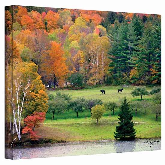 历史新低!Art Wall Killington Vermont 24x18英寸风景帆布装饰画1.7折 18.43加元限时清仓并包邮!