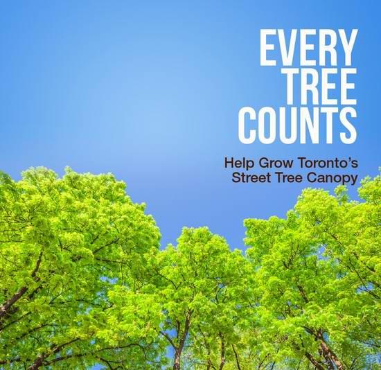 春天来了!多伦多开始接受免费种树申请!每周六免费送堆肥土!