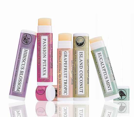 历史新低!Art Naturals 100% 纯天然蜂蜡润唇膏6件套 7.5加元限时特卖!