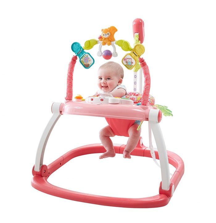 Fisher-Price 费雪 Floral 粉色折叠式跳跳椅 59.97加元,原价 91加元,包邮