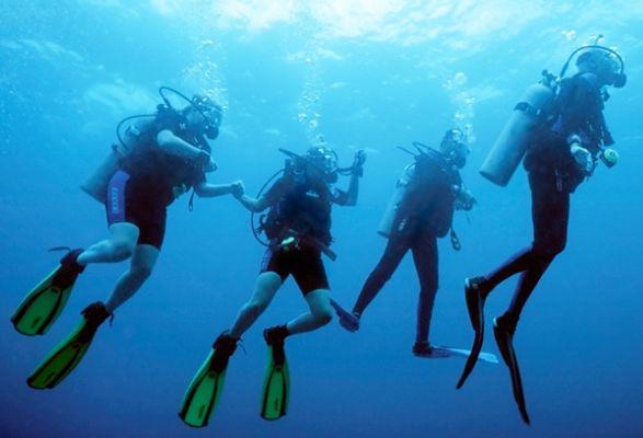 带着孩子一起探索大海吧!Dive Aqua零基础PADI水肺潜水证书课程 349加元,原价 984加元