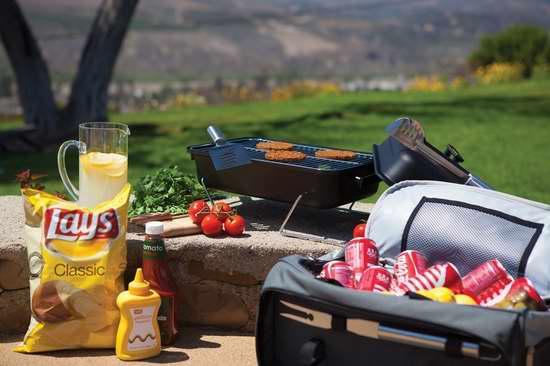 历史新低!Picnic Time Buccaneer 一体便携式BBQ烧烤全套用具/野餐绝热保温包2.1折 46.94加元限时清仓并包邮!