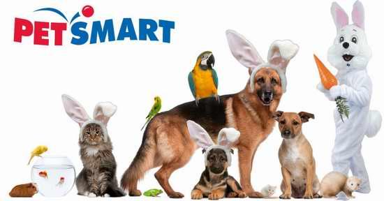 Petsmart 宠物用品 国庆特卖!全场满100加元立省30加元!