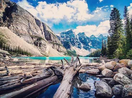 门票免费一整年!盘点今年夏天,最值得一去的国家公园!