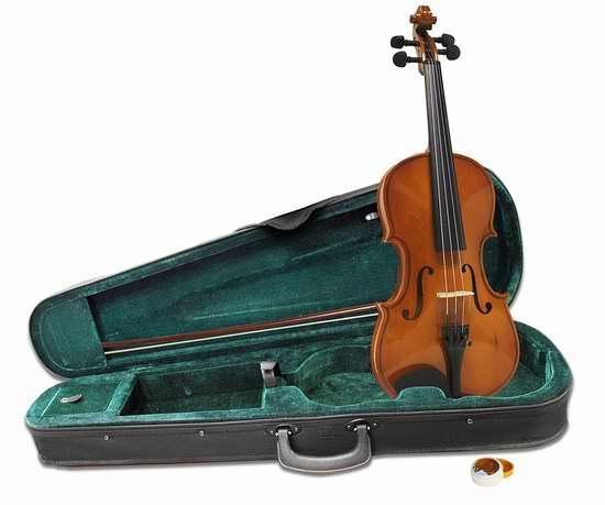 历史新低!Windsor MI-1013 1/4 Size 儿童小提琴6.4折 65.25加元包邮!
