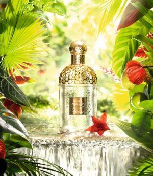 法国娇兰 Guerlain 热带青柠花草水语淡香水 59.6加元(120ml),原价 112.01加元,包邮
