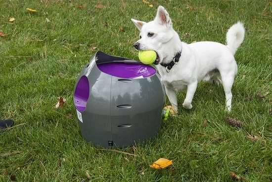 近史低价!PetSafe 宠物狗自动网球发射器6.2折 155.94加元包邮!
