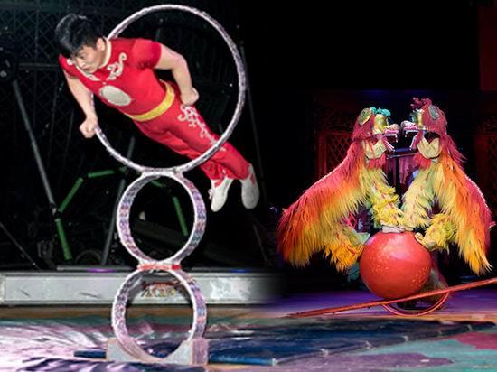本周正在上演!Royal Canadian Family Circus 加拿大皇家马戏团 Markham巡演双人票4.5折 28加元!