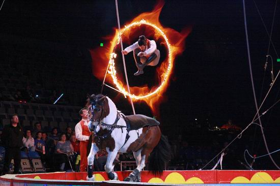 士嘉堡开演!加拿大皇家马戏团 Royal Canadian Family Circus 多伦多5地 巡演门票4.9折 15.29加元!