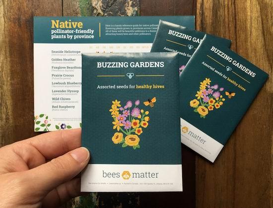春暖花开,Bees Matter 面向全国免费送花种!有图有真相,小编已收到!