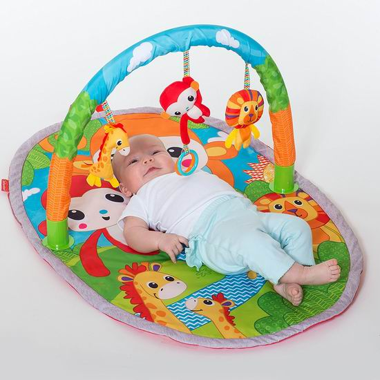 历史最低价!Infantino Explore & Store 婴幼儿健身游戏垫 15.99加元清仓!