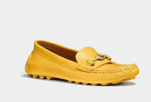 Coach Crosby Driver 休闲平底鞋 122.5加元(5色),原价 245加元,包邮