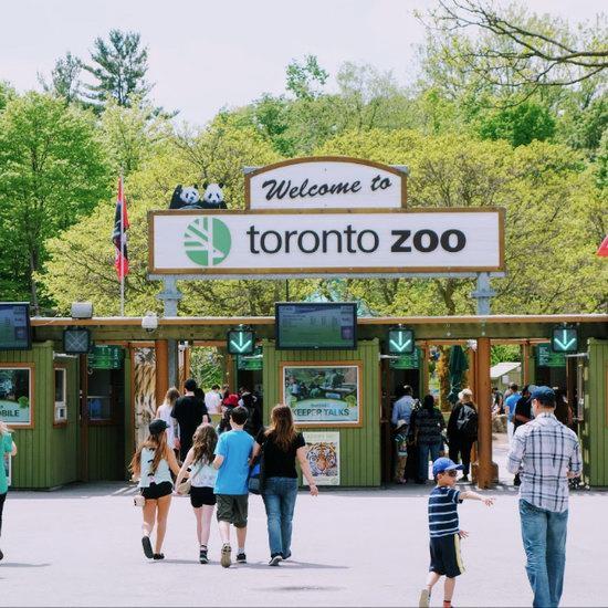 Toronto Zoo 多伦多动物园迎万圣节,儿童可免费入园!