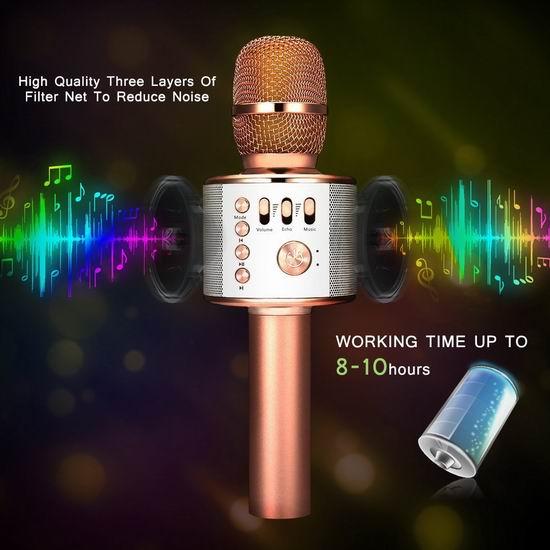 LEKAMXING 三合一 便携式蓝牙无线掌上KTV麦克风 20.39加元限量特卖!