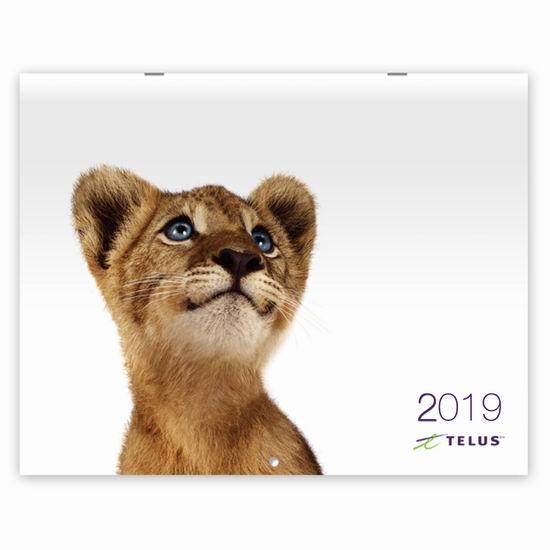 Telus 向客户免费寄送2019年动物月历!