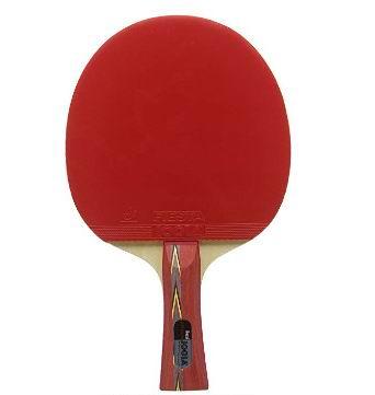 JOOLA 53133 娱乐级乒乓球拍 23.06加元,原价 59.94加元