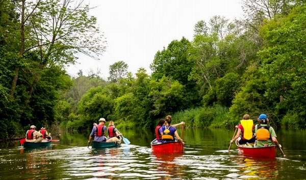 丛林泛舟探险!多伦多 Humber 汉波河2小时独木舟探险5.2折 16.1-31.5加元加元起!