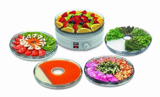 历史最低价!Salton DH1454 家用食物烘干脱水机/干果机5.1折 39.98加元包邮!