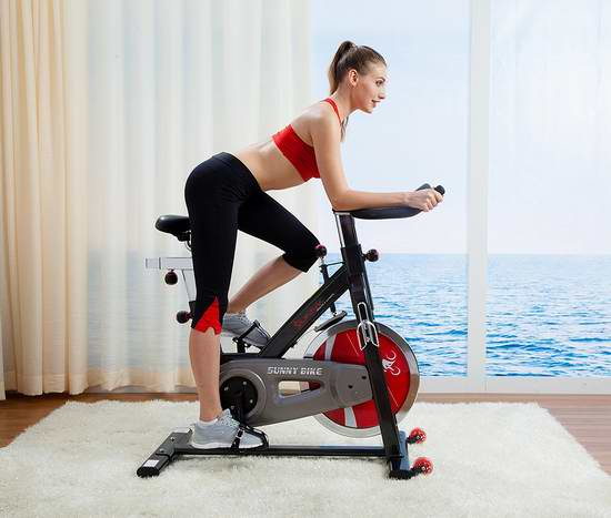 Sunny Health & Fitness SF-B1002 皮带版 豪华静音家用动感健身自行车 511.97加元包邮!