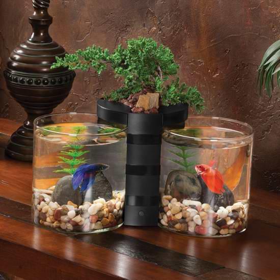 历史新低!Elive Betta 迷你双桌面鱼缸+盆景组合 30.6加元限时特卖!