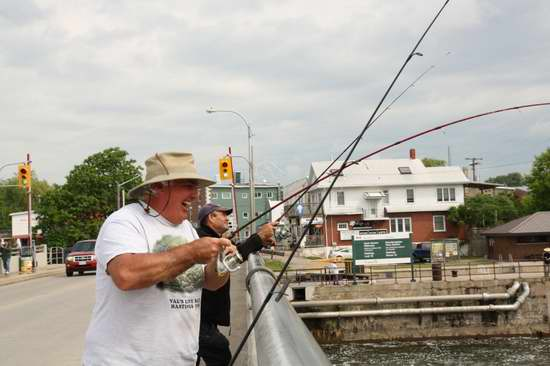 安省境内7月3日-11日免费钓鱼,网上免费学钓鱼!内附钓鱼秘籍和钓点!