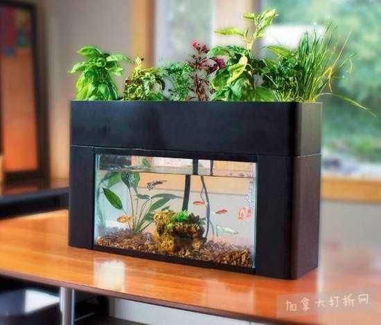 历史新低!AquaSprouts Garden 二合一 种菜种花鱼缸6.2折 206.97加元包邮!