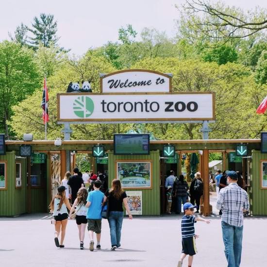 Toronto Zoo 多伦多动物园万圣节活动:本月2个周末,儿童免费入园!