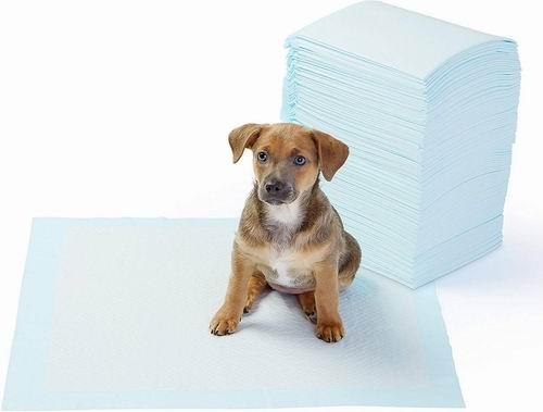 AmazonBasics 狗狗尿垫 100张 21.32加元