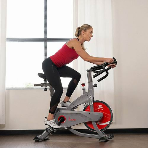 Sunny Health & Fitness AeroPro SF-B1711 室内健身自行车 857.32加元包邮!