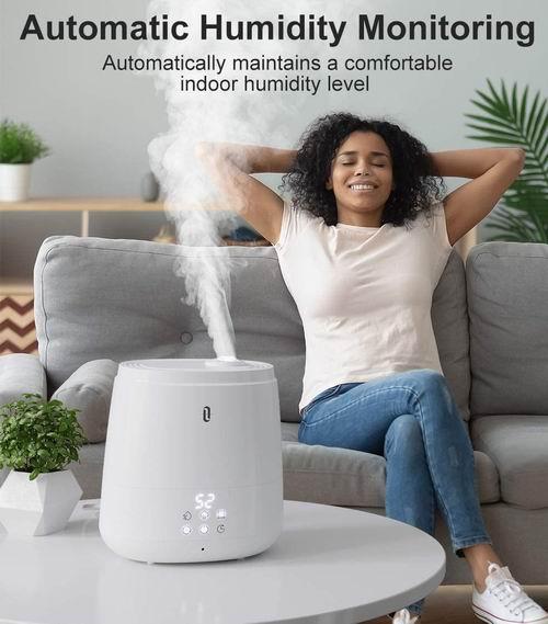 TaoTronics 6升低噪音 超声波冷雾 香薰 加湿器 95.99加元限量特卖并包邮!