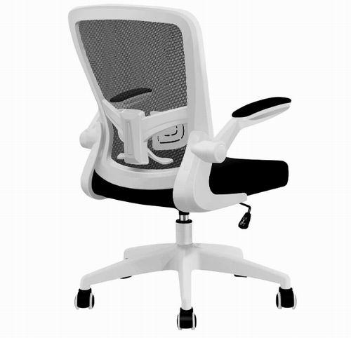 FelixKing Ergonomic 网状靠背人体工学桌椅 161.49加元(2色可选),原价 209.99加元,包邮