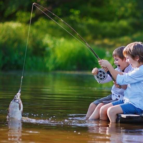 安省本周末两天免费钓鱼,网上免费学钓鱼!内附钓鱼秘籍和钓点!
